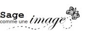 Sage-comme-une-image-3